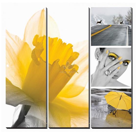 Fresh Daffodil Canvas Murals
