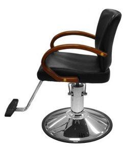 DH 1018G2 Stylish Chair